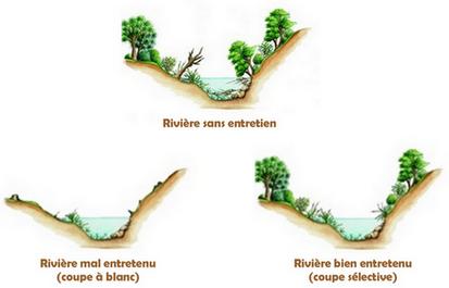 entretien riviere